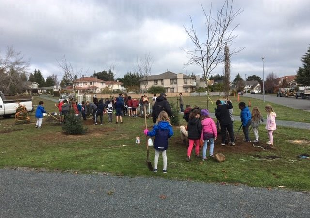 Tree Planting in our Community