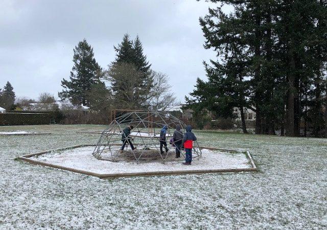 Snowy Days! – January 2020